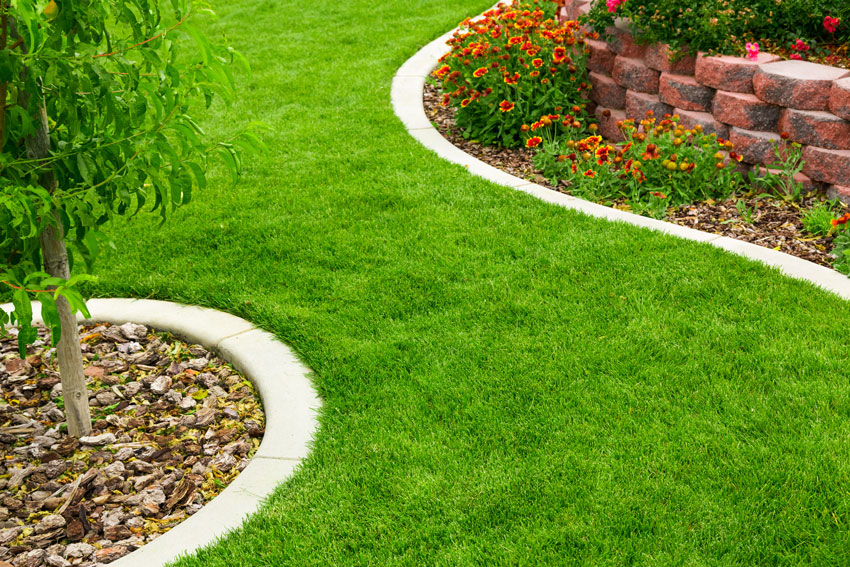 contoured landscaped yard